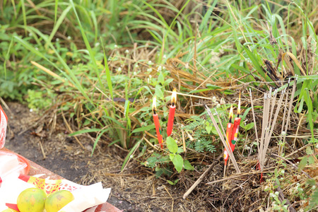 The Chinese candles stick into the soil.