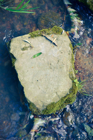 riverbed: big stone in a riverbed in water