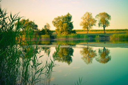 Reflections of green trees, blue sky and clouds in the calm water lake - Early morning, rural countryside landscapes natural backgrounds