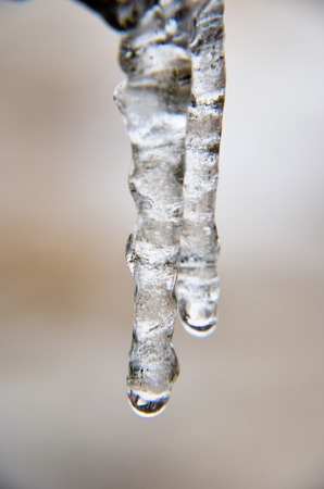 Transparent clear two icicles hang Stock Photo