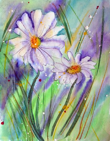 Two Camomile flowers, watercolor illustration on colorful background