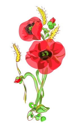 Bouquet with poppies and ears. Vector