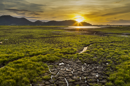lack of water: Lack of water in reservoir fields after no rain  for a long time. Stock Photo