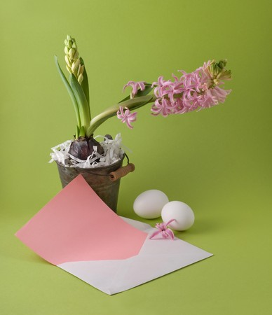 Letter with easter congratulation and bucket  with a hyacinth