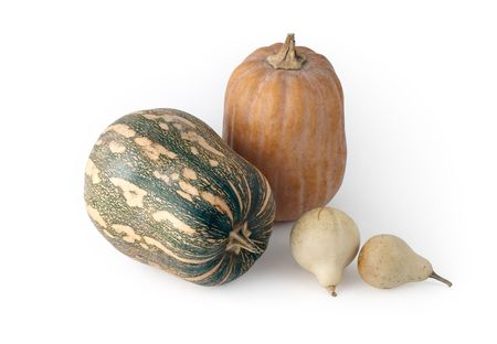 Isolated pumpkins on a white background