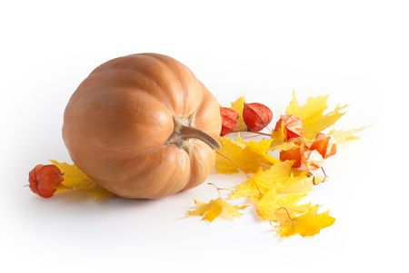 alkekengi: pumpkin and yellow leaves