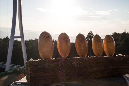 Wooden egg characters made from thing wood also known as Kicoro in Mishima Skywalk Фото со стока