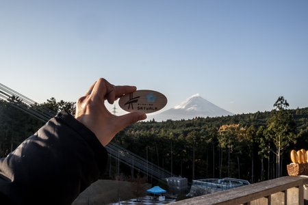 Mishima Skywalk souvenir made from wood