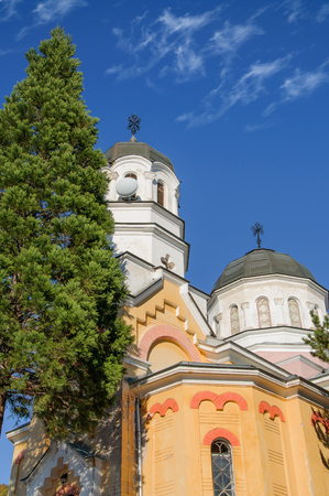 ortodox: small ortodox church with pine in foreground