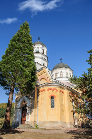 small ortodox church with pine in foreground