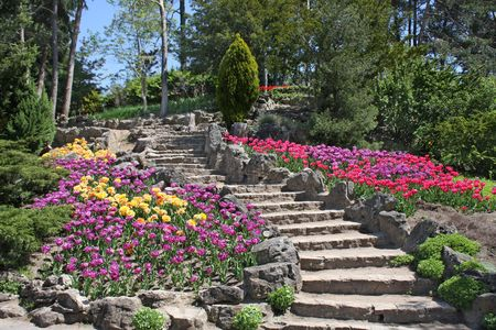 resting: Sweeping stone stairway amid multicolored tulips Stock Photo