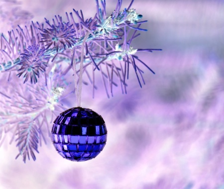 Mirror christmas ball hanging on a branch Stock Photo