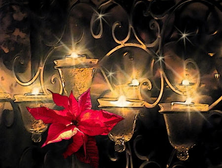 Christmas candles with red poinsettia