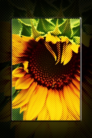 artwork: Abstract Sunflower Halftone Artwork Stock Photo