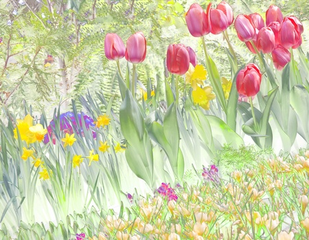 Pastel spring tulip garden illustration