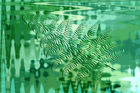 Abstract spring background with fern Stock Photo