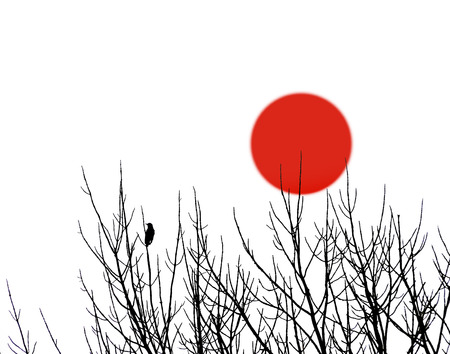 Single bird silhouette on bare branches with red sun