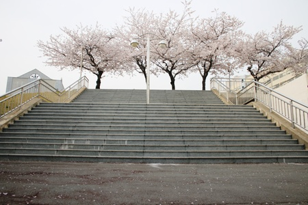 stairs 스톡 콘텐츠