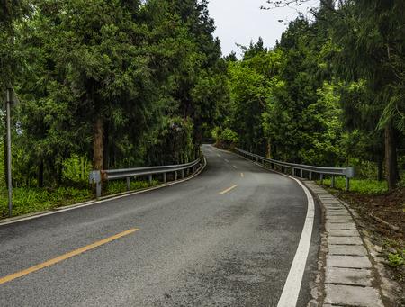 Asphalt road interspersed in the woods 写真素材