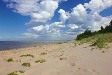 View at the beach in Latvia Stockfoto