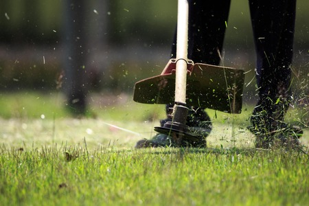 The gardener cutting grass by lawn mower Foto de archivo