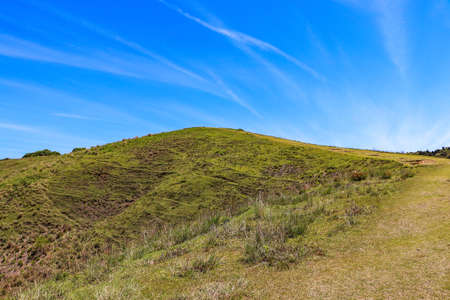 Mountain trail covered with grass at Mt. Wakakusa