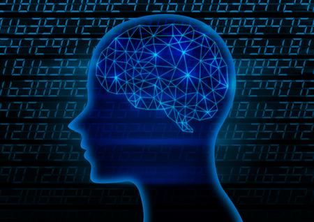 ze: Brain images
