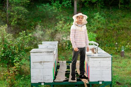 Beekeeper in a protective cap stands between the hives, on a metal frame covered with planks. On the hive, a tool to smoke bees.