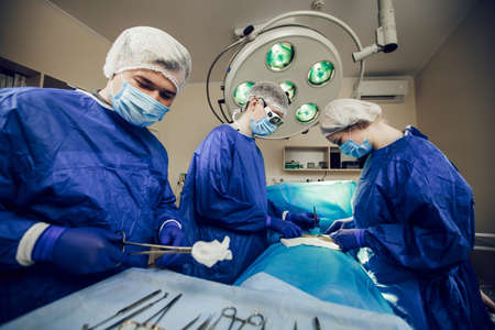 A team of surgeons in a blue uniform operates on a patient in a hospital. Side view of young doctors at work. A young doctor disinfects surgical scissors