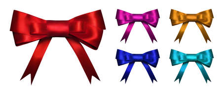 Set of color gift bows. Vector bow.