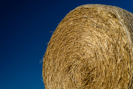 Round bales of straw lying on a field. Standard-Bild