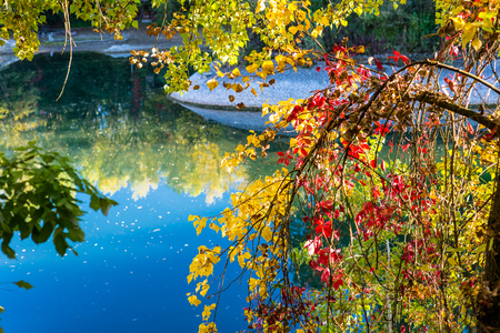 Beautiful autumn colors with leaves against a calm and peaceful pond. Stok Fotoğraf