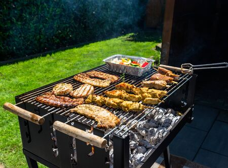 Different types of meat on the grill, standing on a garden.
