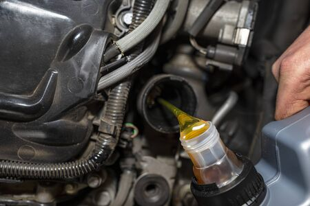 Car mechanic pours new car oil into the engine from a plastic tank in a car workshop. Banco de Imagens