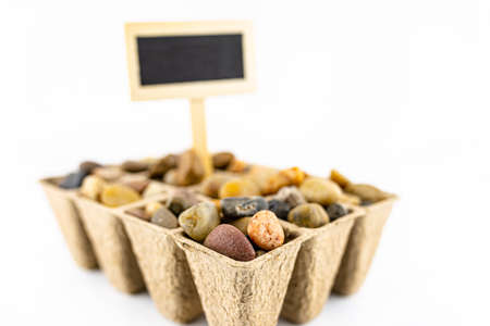One, wooden blank boards, label with stick, stuck in a cardboard extruder filled with decorative pebbles, conceptual photo, space for text, isolated on a white background.