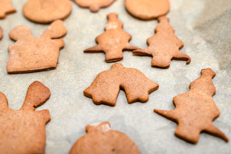 Baked gingerbread cookies in various shapes without decorations, lying on baking paper
