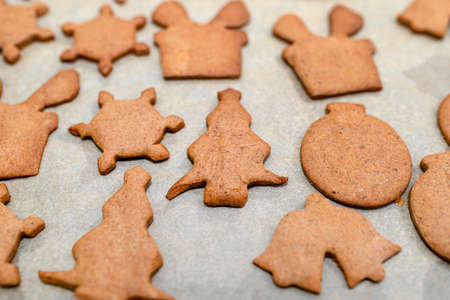 Baked gingerbread cookies in various shapes without decorations, lying on baking paper. 版權商用圖片