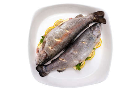 Fresh, raw two trout lying on a plate, stuffed with butter, parsley and lemon slices, isolated on a white background 版權商用圖片