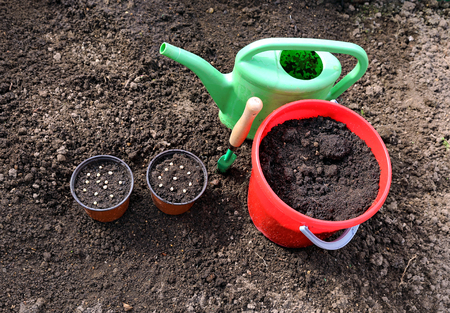 seed bed: Horticulture accessories on the gardenbed in the garden