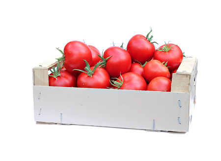 Harvest red ripe tomatoes in wooden box isolated on white background Stock Photo