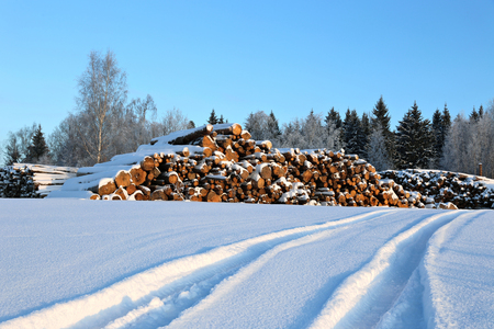 snowcovered: Harvesting timber logs in a forest in Russia in winter and snow-covered road Stock Photo