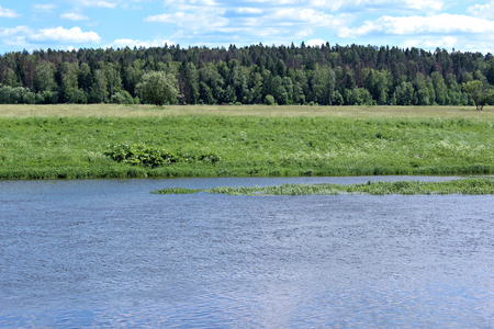 water flowing: Landscape on the shores of the Russian River, field with green grass and forest in the distance