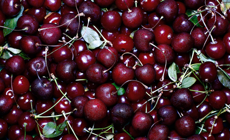 Background of red ripe cherry berries Imagens