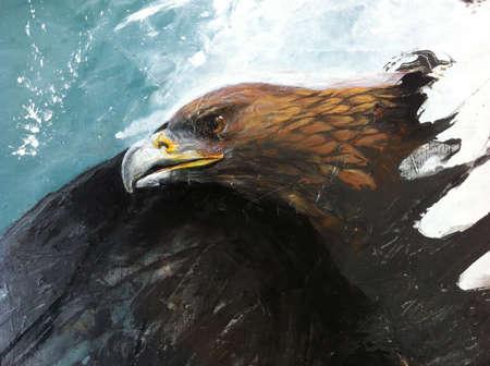 eye: Eagle eye