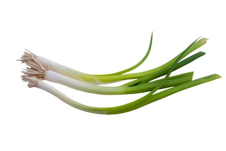 green onions isolated on white background Banco de Imagens
