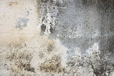 The walls are painted white and abrasions. Standard-Bild - 134722686