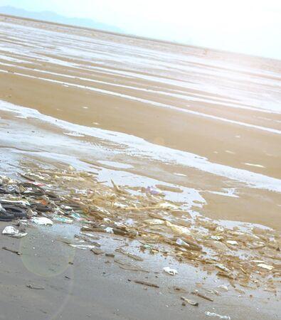 trash in the beach Stock Photo