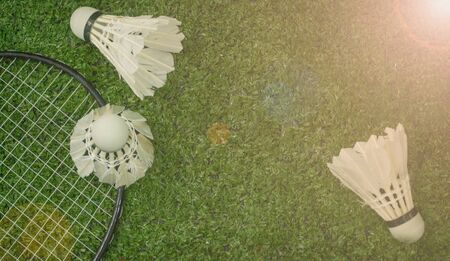 Badminton on the green grass Stock fotó