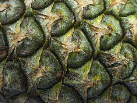The surface of green pineapple,Medicinal properties of the pineapple It helps treat a variety of diseases such as dysentery, gonorrhea diuretic to relieve scar
