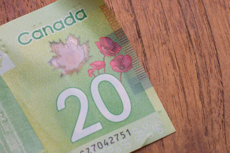 Currency of the Canada - One green twenty dollar notes spread out on a brown table background. Money exchange. 版權商用圖片